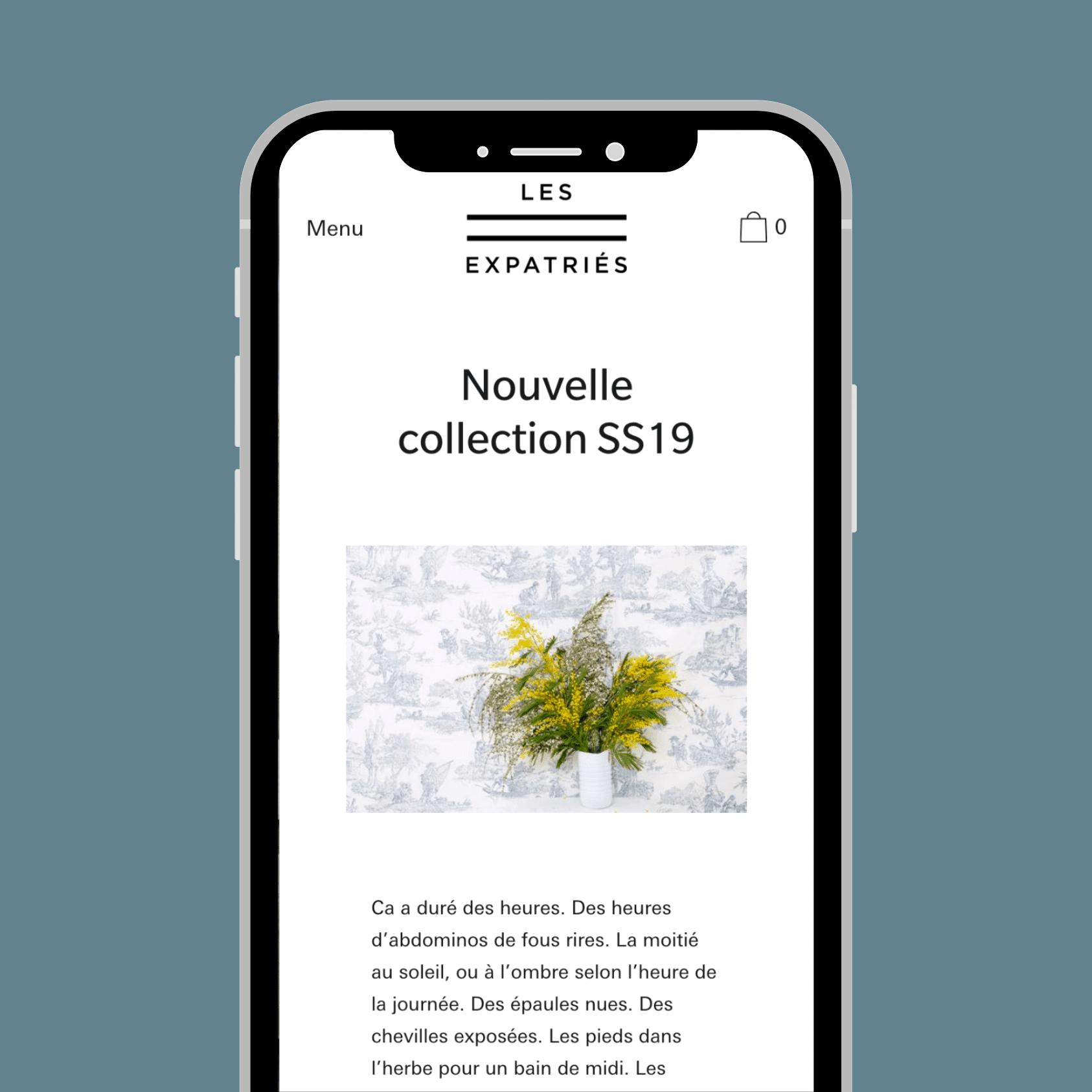 Création boutique en ligne - Les Expatriés