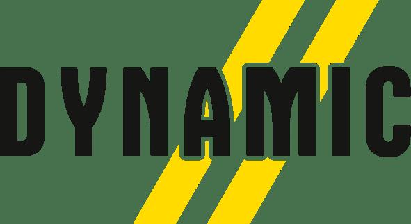 Logo Dynamic - Skis de légende