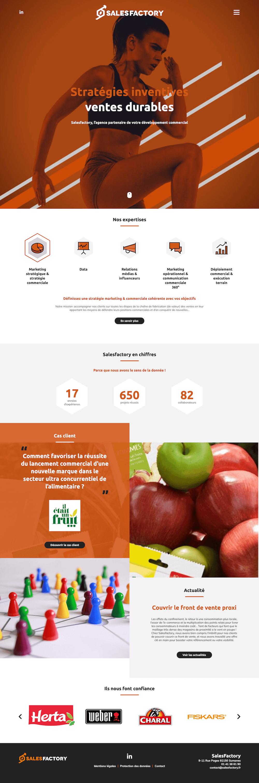 Développement page accueil site Web